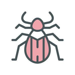 ASW-Pest-Control-Specialists_Trowbridge_Beetles