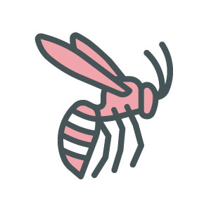 Wasp Nest Removal Icon